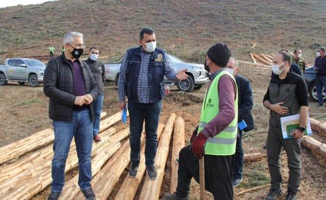 Kozan'da yanan orman alanları devlet eli ile yeşerecek