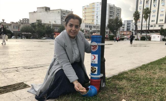 Ceyhan'da sokak hayvanlarına 500 kilo mama