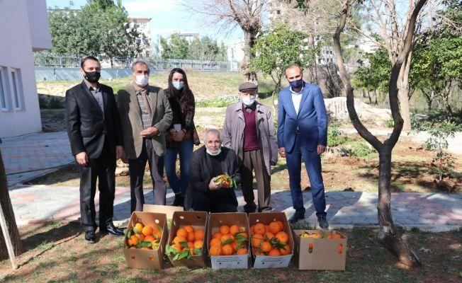 Kozan'ın yöresel ürünleri 'e- ticaret' ile yurdun dört bin yanına gidiyor