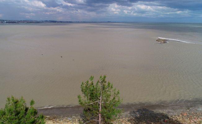 Denizde organik kirlilik
