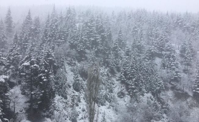 Adana'nın yüksek kesimlerinde kar yağışı etkili oldu