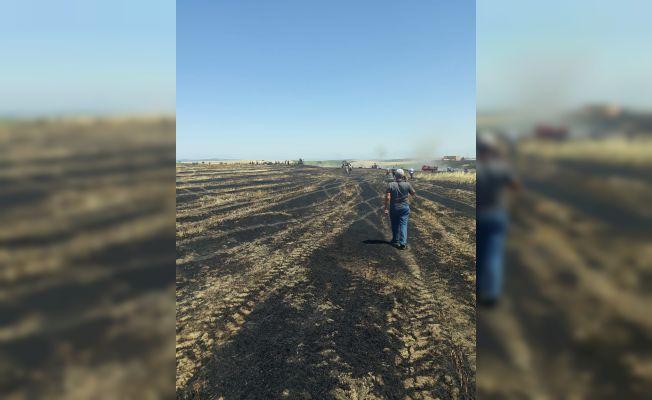 Kozan'da 15 dönüm buğday kül oldu