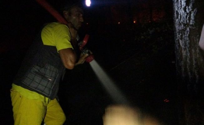 Kozan'da orman yangını kontrol altına alındı