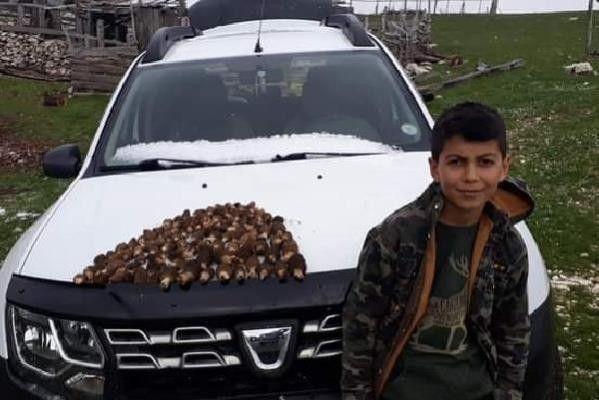 Traktörün altında kalan 13 yaşındaki çocuk öldü
