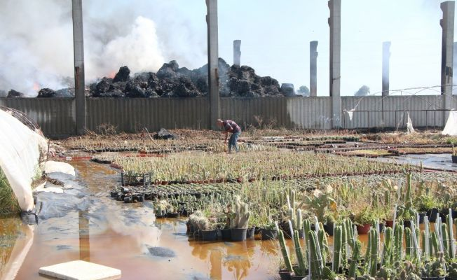 Adana'da geri dönüşüm tesisindeki yangın kontrol altına alındı