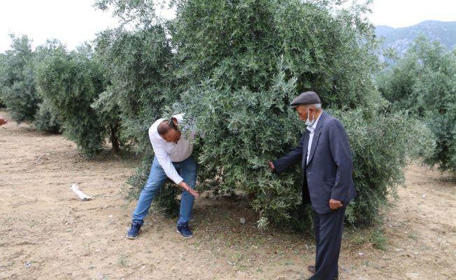 Kozan'da hasar tespit çalışmalarına başlandı