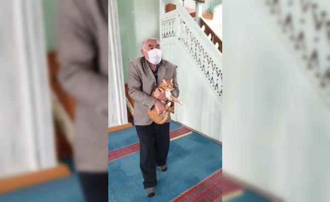 Saimbeyli'de cami görevlileri ve cemaat sokak hayvanlarına sahip çıkıyor