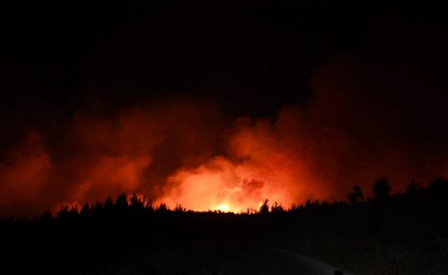 Adana Aladağ'da orman yangını