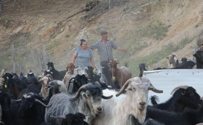 Köyün Azeri hamarat gelini