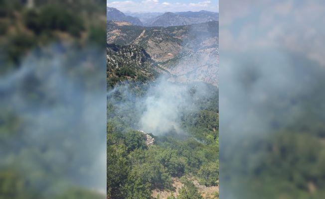Kozan'da çıkan orman yangını kontrol altına alındı