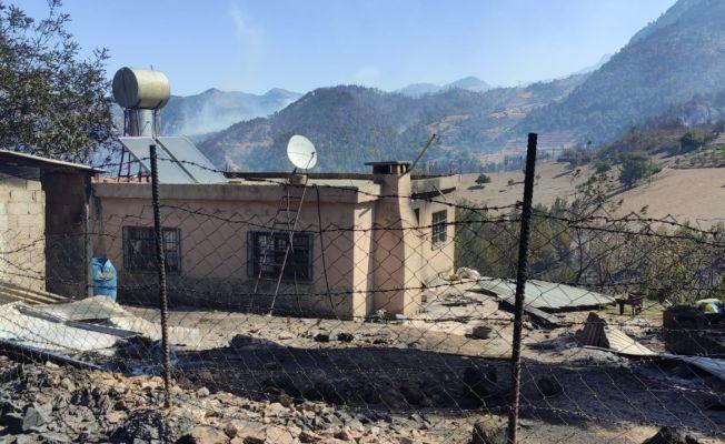 Kozan'daki yangında inekler telef oldu