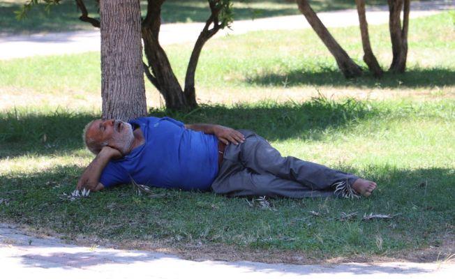 Sıcaktan fenalaşıp gölgede uyudu, vatandaşlar öldü sandı