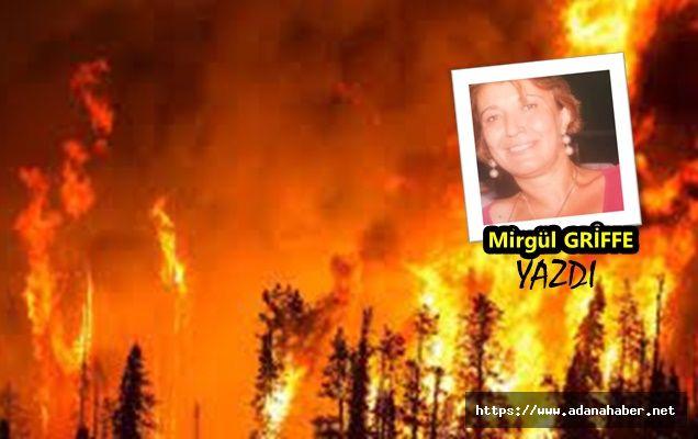 Yangınlardan alınacak dersler