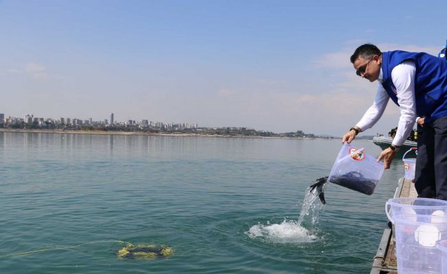 Bakan Pakdemirli Adana'da göle balık bıraktı