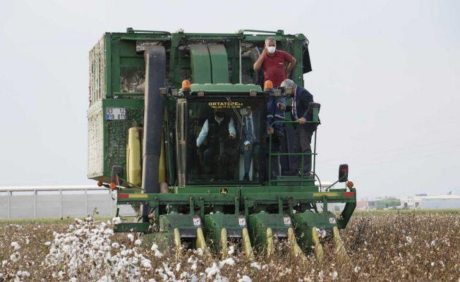 Bakan Pakdemirli biçerdövere binip pamuk hasat etti