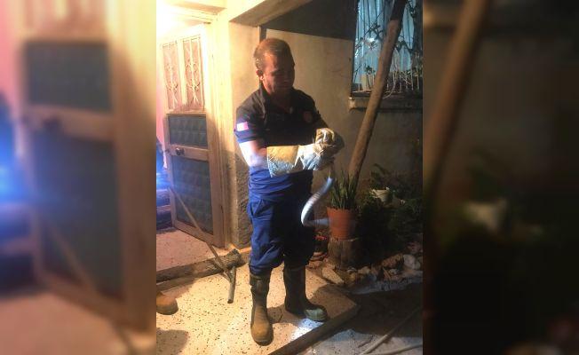 Eve giren yılanı itfaiye ekipleri yakaladı
